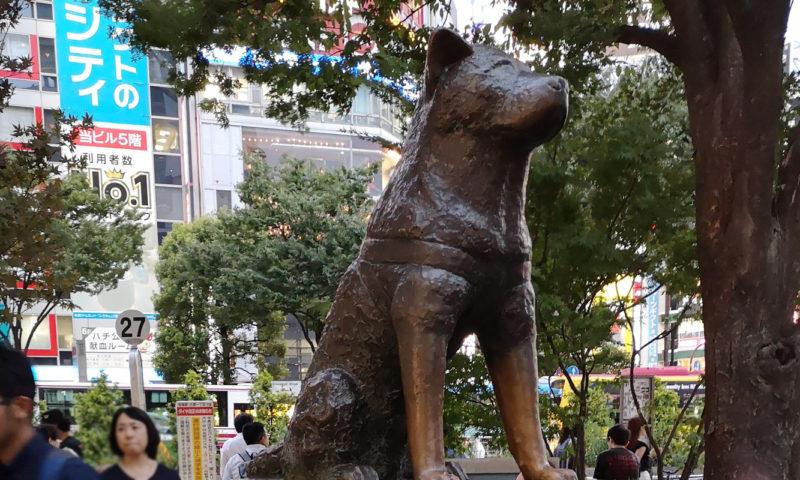 Statue d'Hachiko à Shibuya.